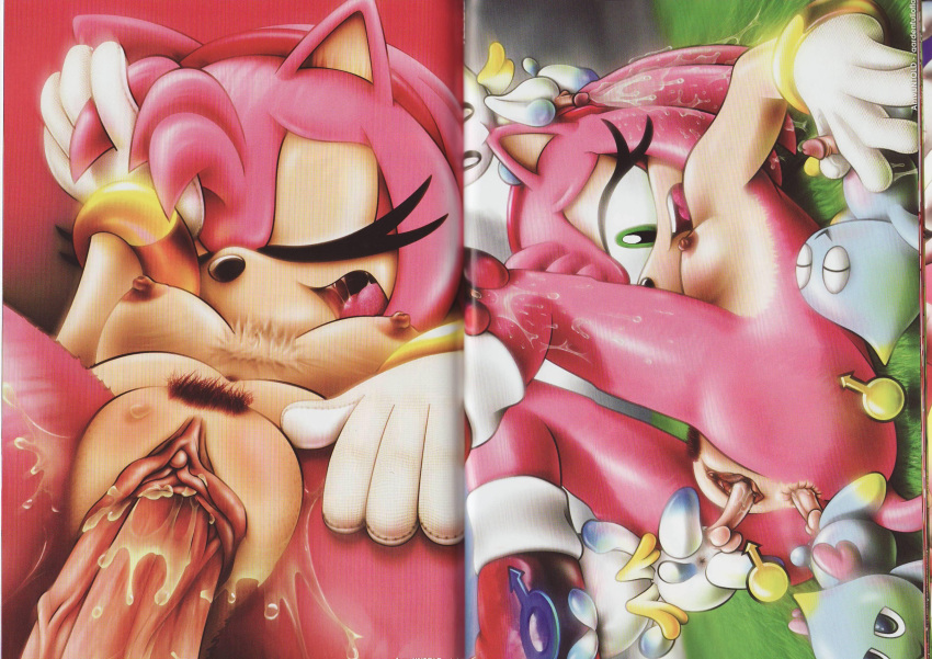 is old amy rose how Lana pokemon sun and moon